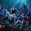 """Kristin Bauer Van Straten ist ein fester Bestandteil der """"True Blood""""-Crew"""