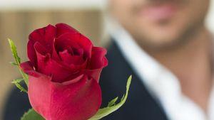 Der Bachelor 2014 mit Rose