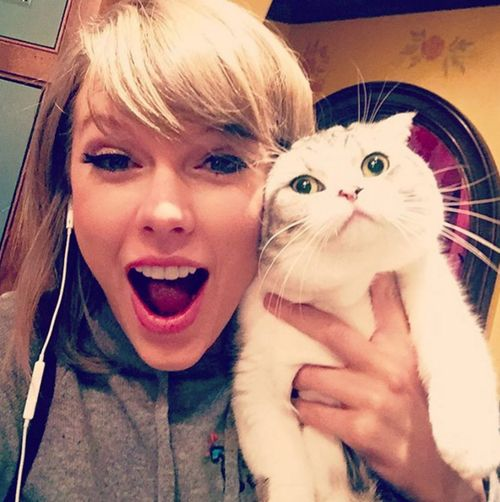 Die Top 5 auf Instagram mit den meisten Followern sind alle Frauen, Taylor Swift ist auf Platz 1