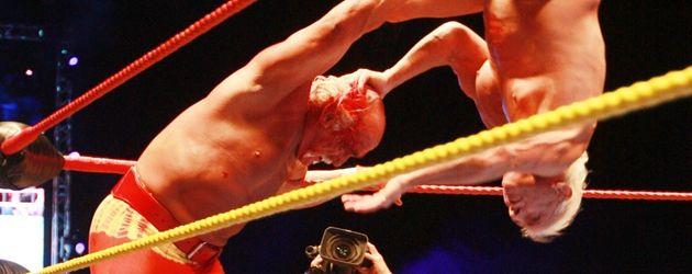 Hulk Hogan kämpft gegen Ric Flair