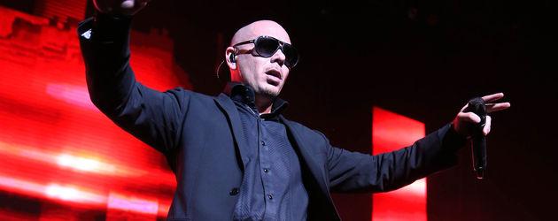 Pitbull hebt beide Hände