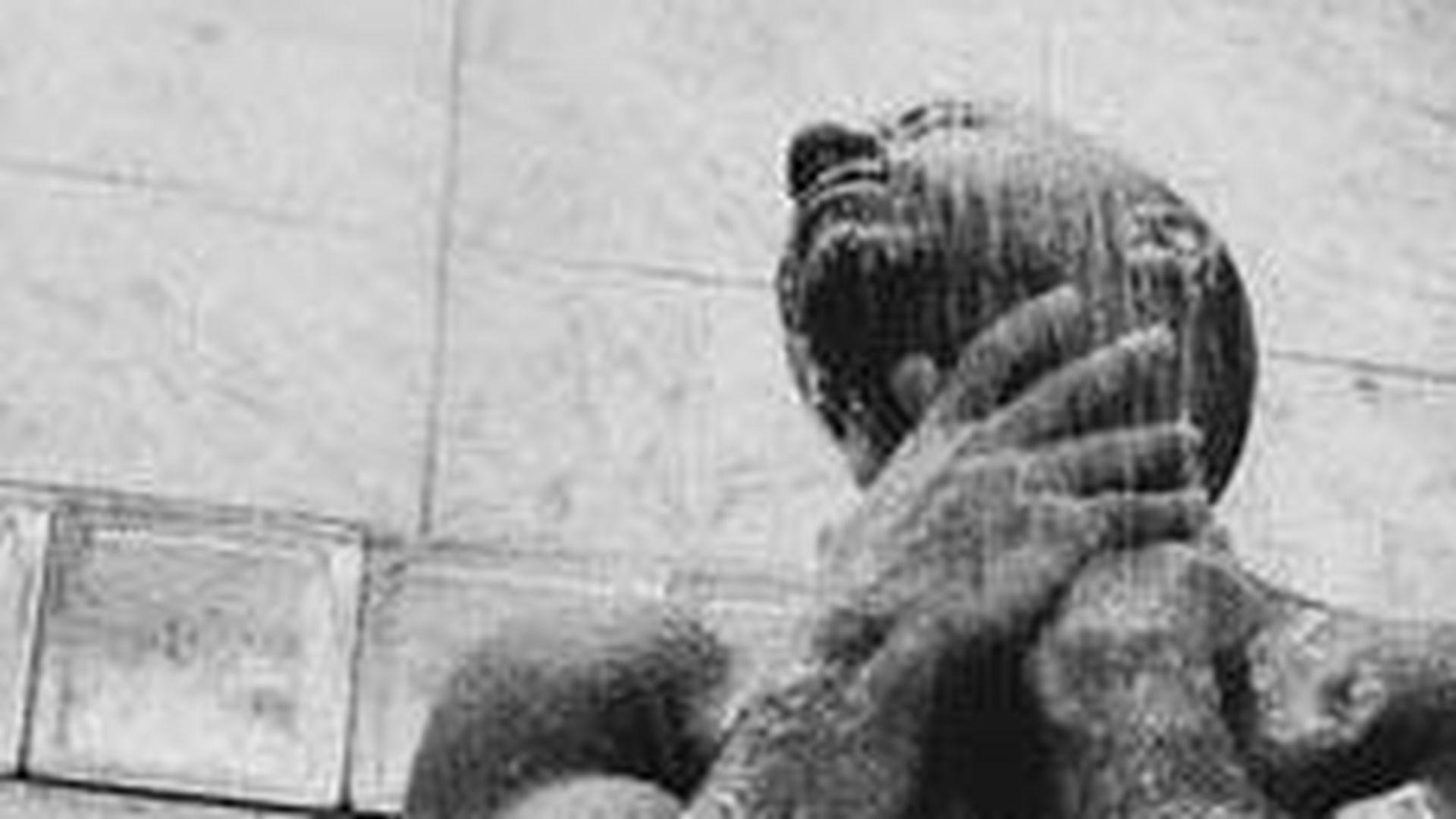 Vin Diesels Nacktfoto löst Facebook-Ekstase aus