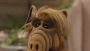 Alf: Skandal um unzensiertes Video