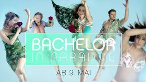 """Im Trailer: So heiß sind """"Bachelor in Paradise""""-Kandidaten"""