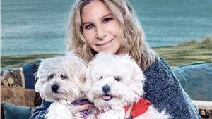 1. Worte von Barbra Streisand: Deshalb klonte sie ihre Hunde