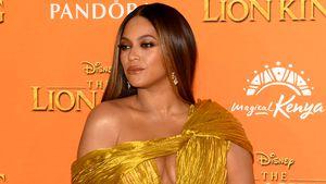 Überraschendes Geheimnis: Superstar Beyoncé züchtet Bienen!