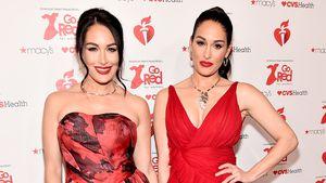 Nach Verlobung: Nikki Bella und Zwilling Brie sind schwanger