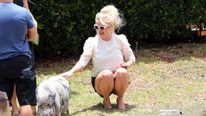 Dieser Ausflug auf Hawaii macht Britney Spears sauglücklich
