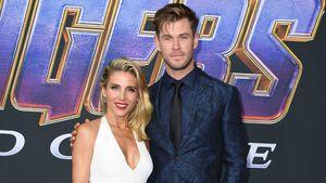 """Mit viel Liebe: """"Avengers""""-Teppich wird zum Turtel-Paradies!"""