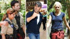 11 Staffeln Dschungelcamp: Das waren die 5 größten Skandale!