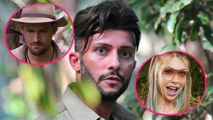 Frühes Dschungel-Aus: Diese Vorteile haben Marco und Toni