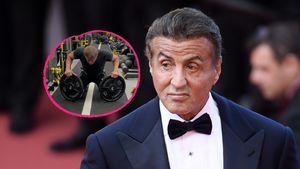 Mit 74 Jahren: Sylvester Stallone stemmt Gewichte im Gym