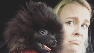 Kleiner Quäl-Geist: Hündchen Zula hält Dagi Bee auf Trab!