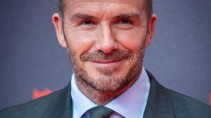 """""""Harry Potter""""-Hörbuch-Neuauflage: David Beckham liest vor!"""