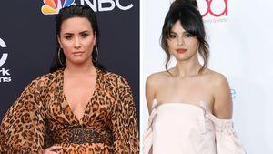 Hat Demi Lovato Selena Gomez anonym im Netz fertiggemacht?
