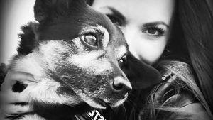 Sommerhaus-Star Denise Kappès trauert: Ihr Hund Luis ist tot