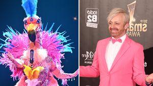 """""""The Masked Singer"""": Passen die Flamingo-Indizien zu Ross?"""