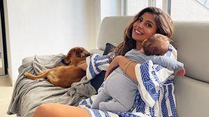 """""""Zu viel"""": Neu-Mama Eva Benetatou gibt Hund vorübergehend ab"""