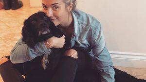 Wegen Bauch: Gemma Atkinson kann krankem Hund nicht helfen