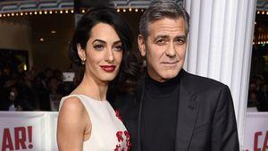Oscar-Preisträger George Clooney und Anwältin Amal Clooney