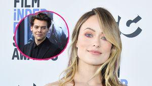 """""""Umgehauen"""": Olivia Wilde schwärmt im Netz von Harry Styles"""