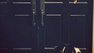 Hilary Duff: Süße Foto-Bombe von Söhnchen Luca