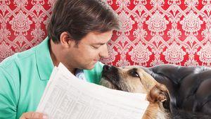 Sterilisation für Hunde-Profi Martin Rütter