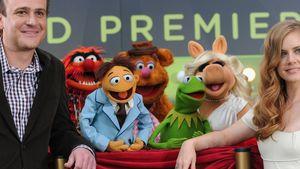 """""""Die Muppets 2"""" etwa doch ohne Jason Segel?"""