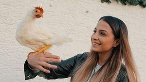 Totaler Tränen-Talk: Jenefer Riili muss ihre Hühner abgeben!