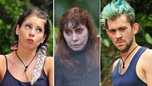 Jenny, Tina oder Daniele: Wer schnappt sich Dschungelkrone?
