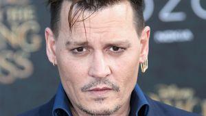 Johnny Depp: Macht ihn der Rosenkrieg mit Amber Heard arm?