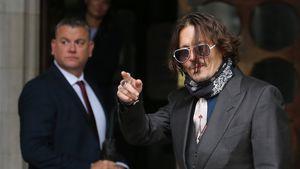 Wollte Johnny Depp Ambers Hund in die Mikrowelle stecken?
