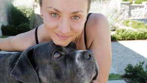 Nach Trauer um ihren Hund: Kaley Cuoco hat neuen Vierbeiner
