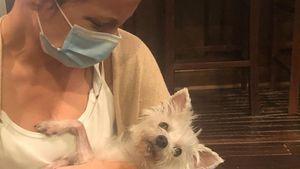 Kate Beckinsale trauert um ihre verstorbene Hündin Ingrid