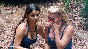 Dschungel als Gruppen-Therapie? Camper heulen um die Wette!