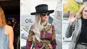 Lady GaGa & Co.: Stars auf Samtpfoten unterwegs