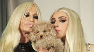 Lady Gaga: Video im TV verboten InTouch