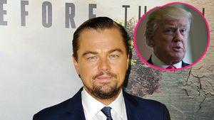 Leonardo DiCaprio und Donald Trump