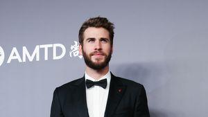 Fan-Petition: Liam Hemsworth soll nächster Bachelor werden!
