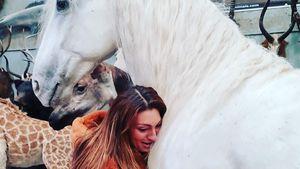 TV-Star Luisa Zissman hat ihr totes Pferd ausstopfen lassen