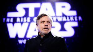 """Nie wieder Luke: Mark Hamill schließt mit """"Star Wars"""" ab"""