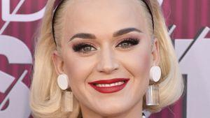 Von Taylor inspiriert: Katy Perry plant Film über ihr Leben!