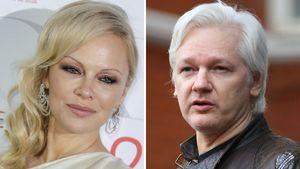 Pamela Anderson fürchtet, dass Assange ermordet werden soll