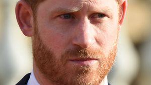 Komplett heuchlerisch? TV-Host zerreißt Prinz Harrys Rede