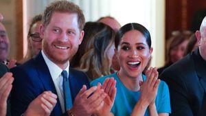 Im Video-Call: Meghan und Harry wirken gelöst und glücklich