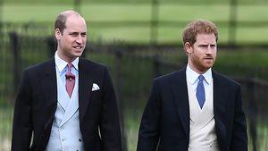 Vergessen Harry und William ihren Streit während Beerdigung?