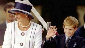 """""""Größter Fehler"""": Meghans Bruder warnt Harry vor Hochzeit!"""