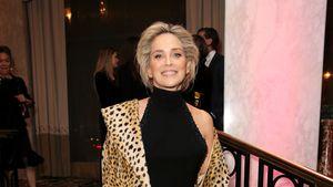 Sharon Stone spricht offen über Bodyshaming-Vergangenheit
