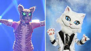 """""""Masked Singer""""-Ländervergleich: Welche Katze ist cooler?"""