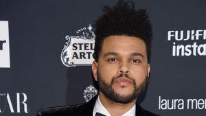Zukünftige Kids: Darum hörte The Weeknd mit Drogen auf